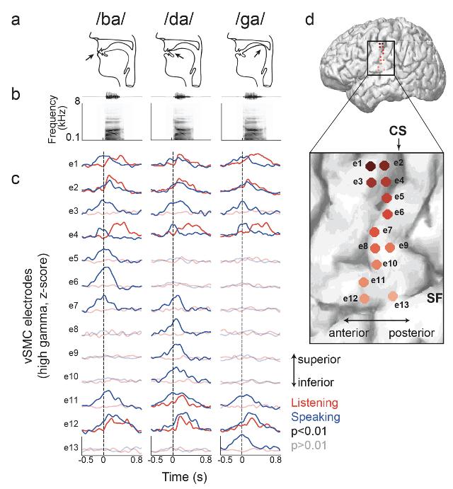 Cheung et al. 2016, Figure 2